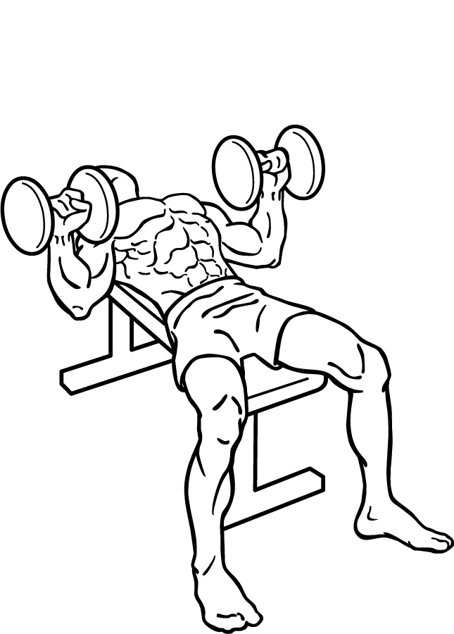 Different Versions of the Dumbbell Bench Press