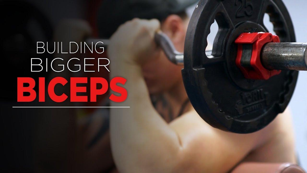 Building Bigger Biceps YouTube Video