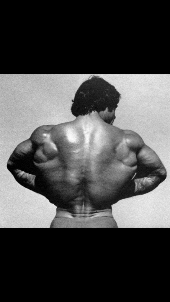 Build a Stronger, Thicker Back